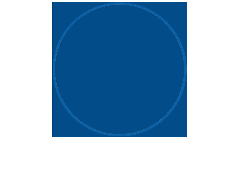 logo MSL Robotics